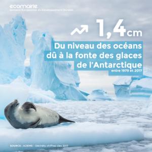 Visuel 4 - Fonte des glaces
